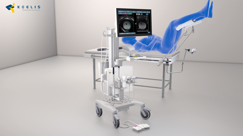 Trinity Fusion biopsy system for transperineal or transrectal targeted prostate biopsies